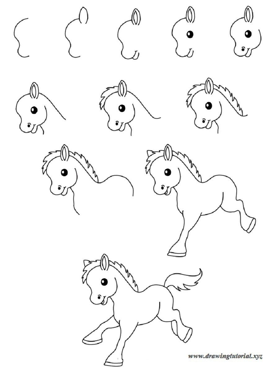 Easy drawings step by step animals best wallpaper best for Simple drawings step by step