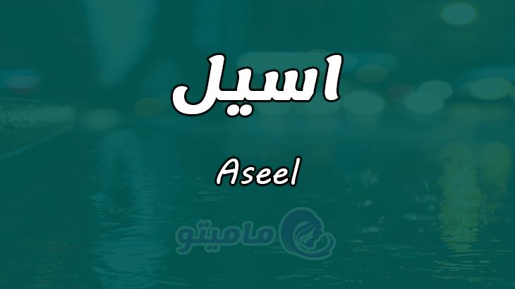 معنى اسم اسيل Aseel وصفات حاملة الاسم Names Meant To Be Lockscreen