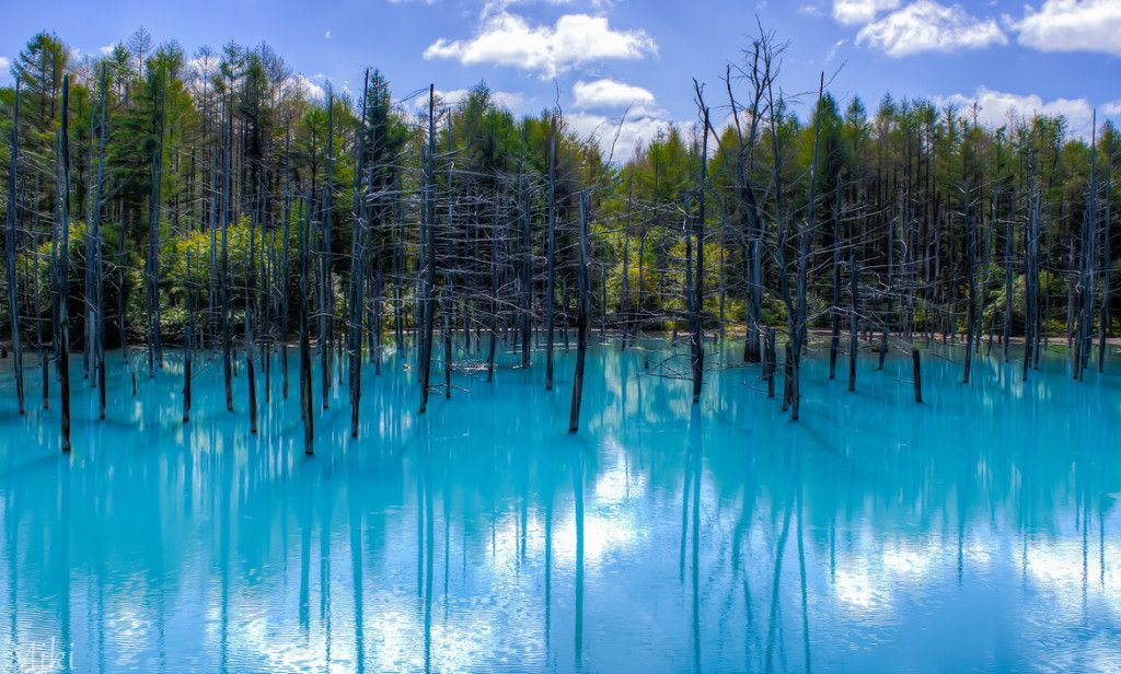Most Beautiful Places In The World Blue Pond Landscape