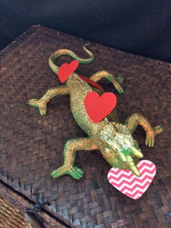 Image result for Valentine lizards