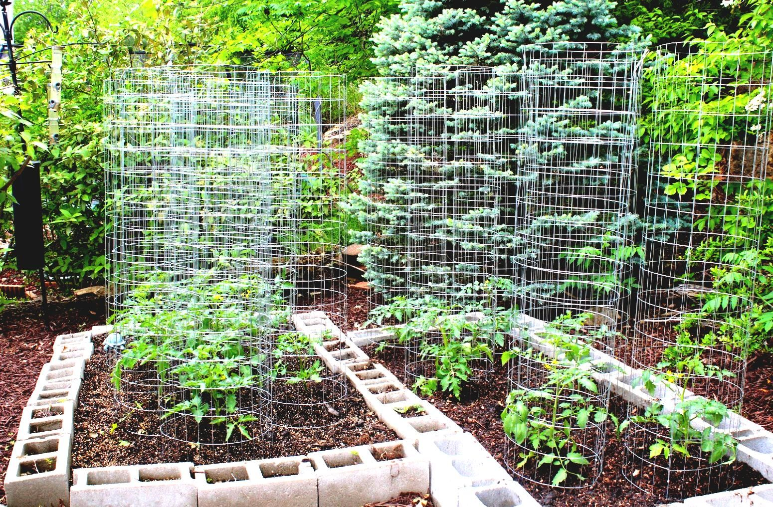 Vegetable garden design  Home Vegetable Garden Design Modern Interior Decorating Ideas