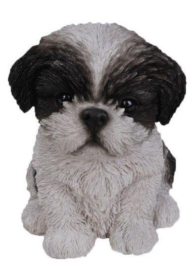 Sitting Shih Tzu Puppy Statue Shih Tzu Puppy Shih Tzu Puppies