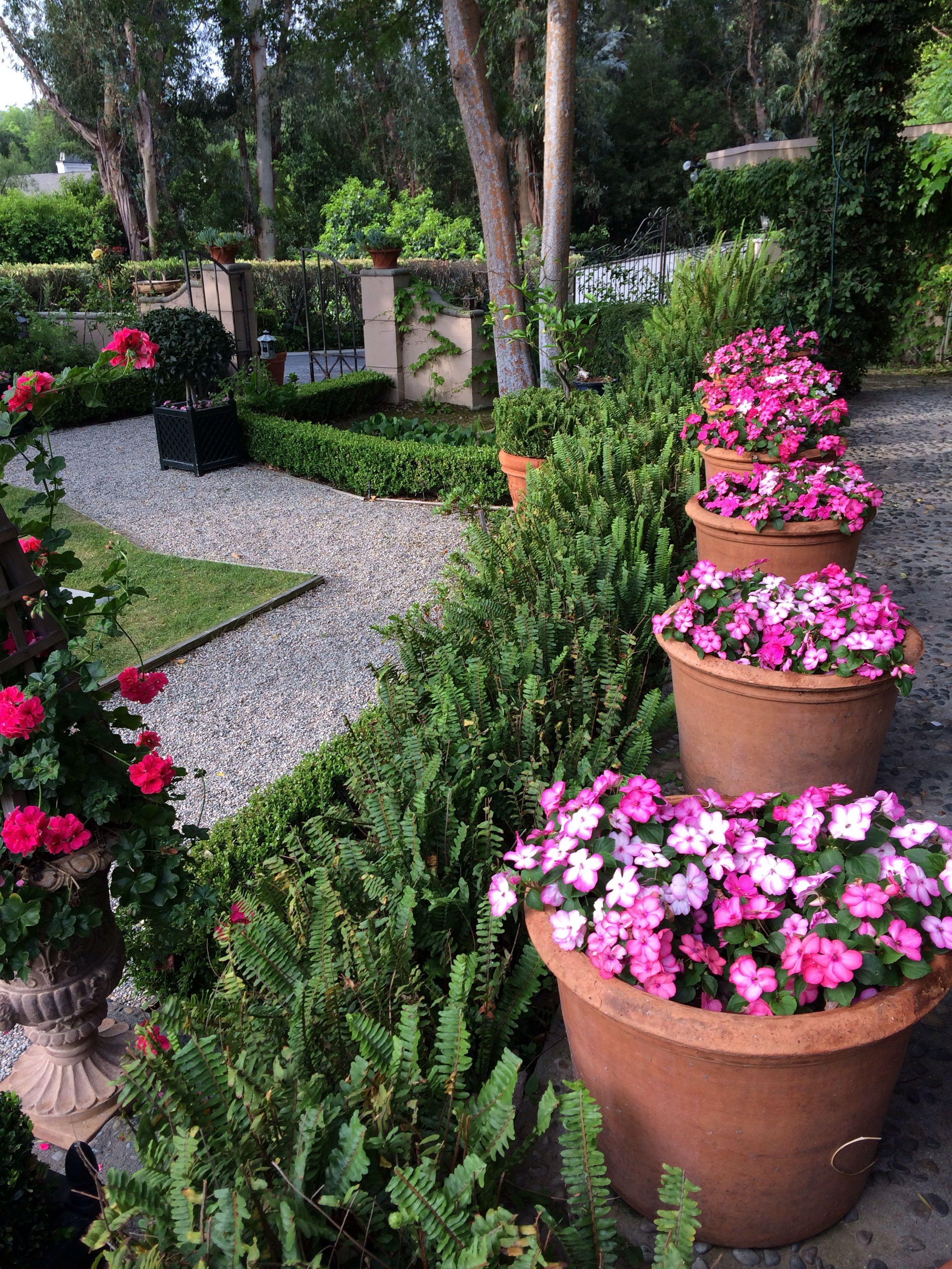 Colorful Inpatiens Planters Outdoor Flowers Plants Planting Flowers
