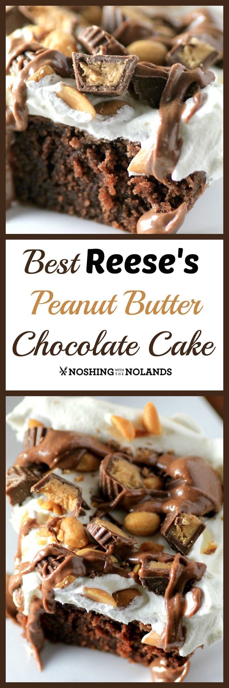 Best Reese's Peanut Butter Chocolate Cake Recipe, from Noshing with the Nolands - The ultimate peanut butter and chocolate cake, this is a decadent dessert that everyone will love!