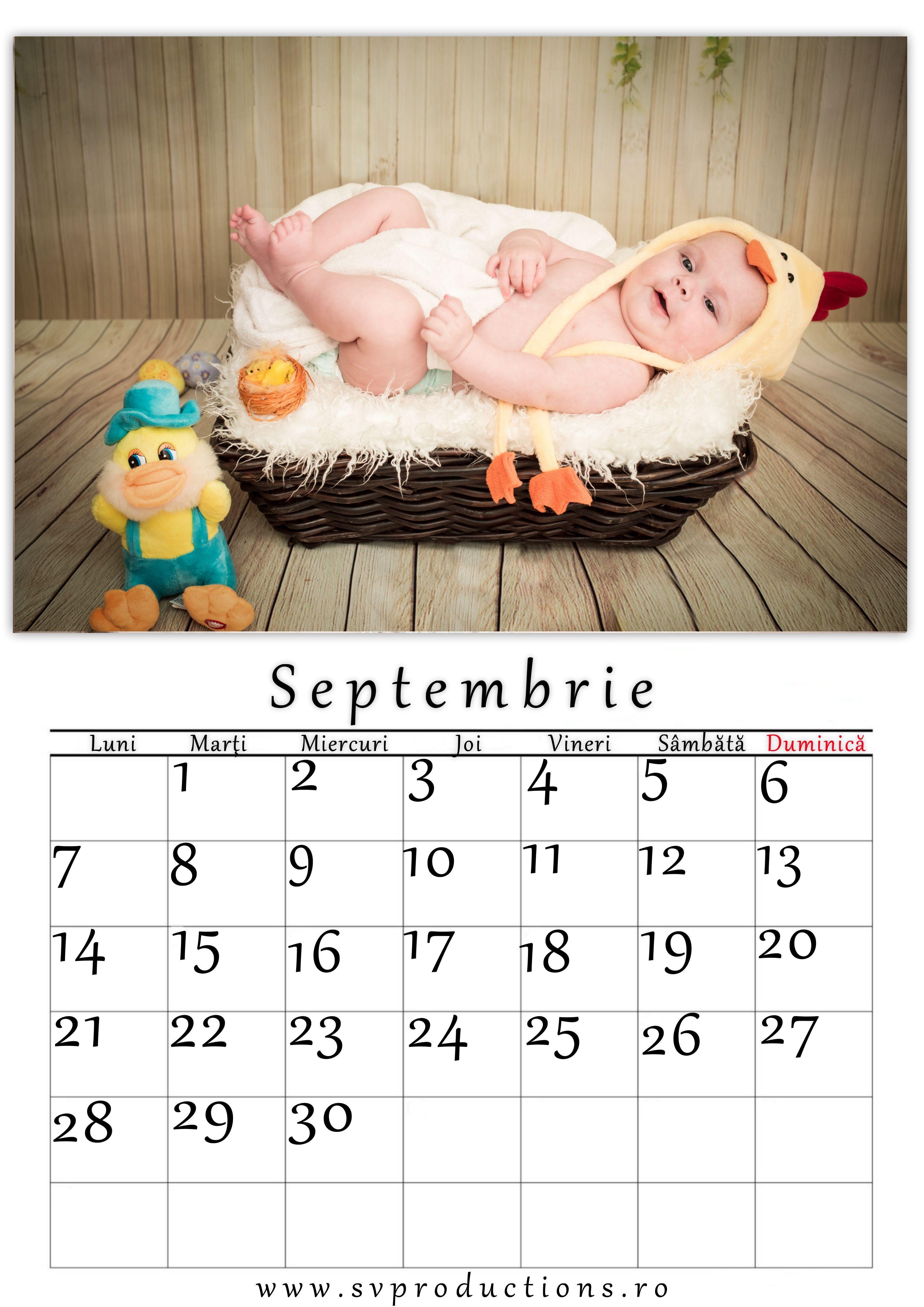 Calendar luna Septembrie cu tema puiut mic si drag!