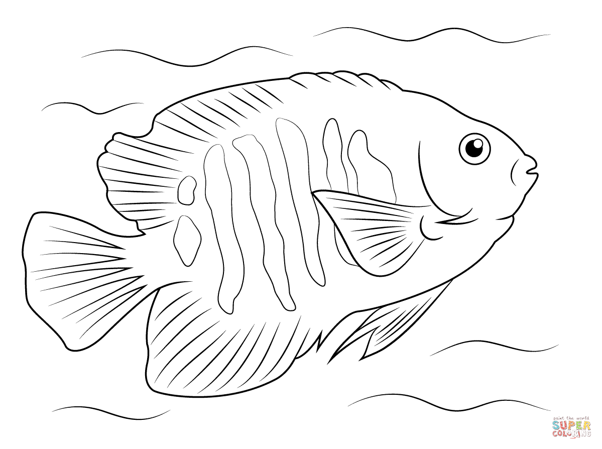 tropical fish coloring page crafty pinterest tropical fish