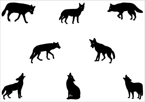 Coyote Silhouette Vector Graphics Pack Silhouette Clip