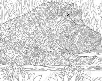 Coloring Pages For Adults Wildcat Lynx Bobcat Caracal Adult