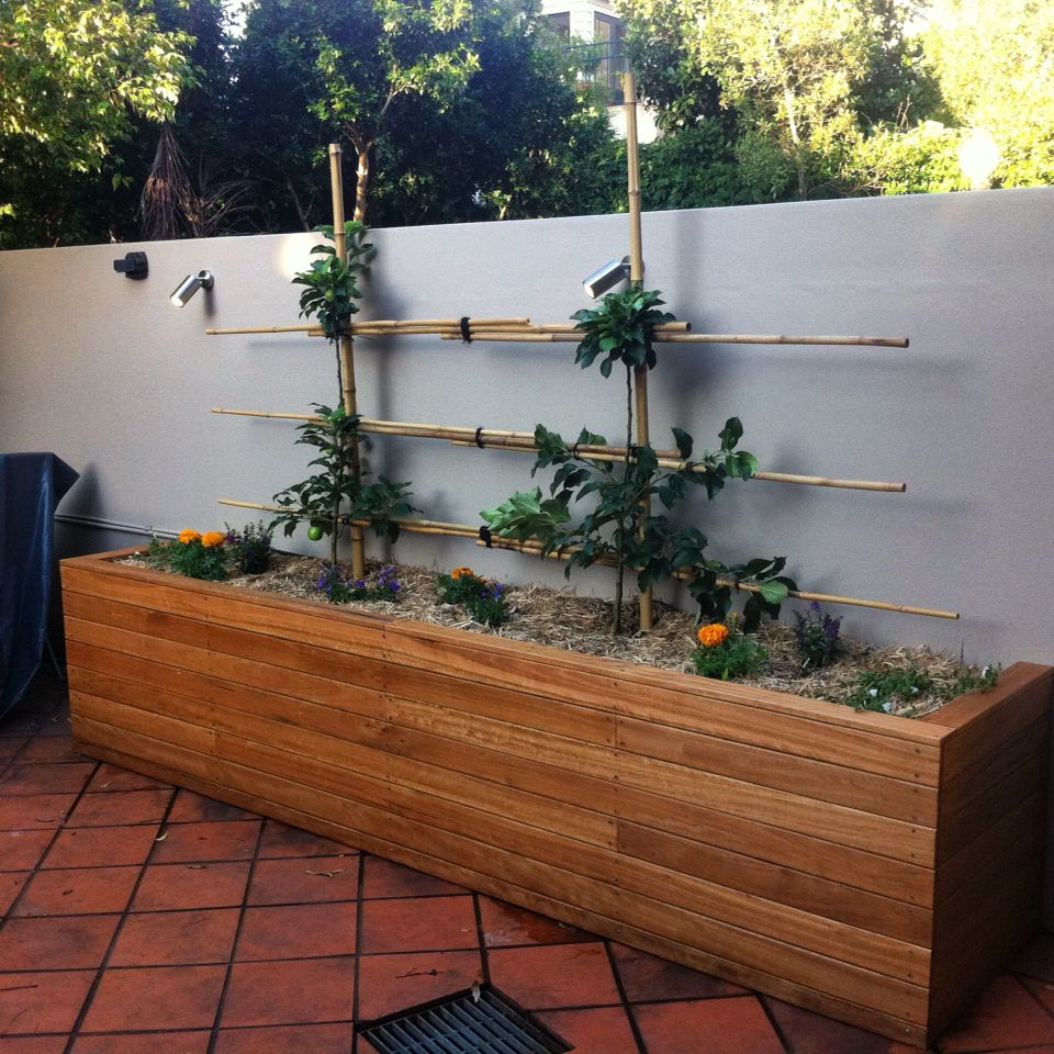 Raised garden bed, cladded with blackbutt decking.  With espalier pink lady apples on Bamboo