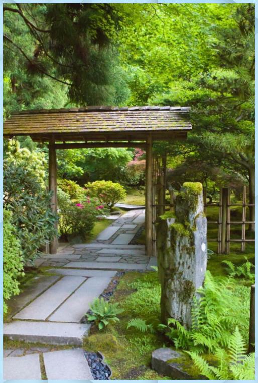 Photo of Green outdoor ideas with calming vibes from Zen garden – Giardino Fai Da Te #cal…