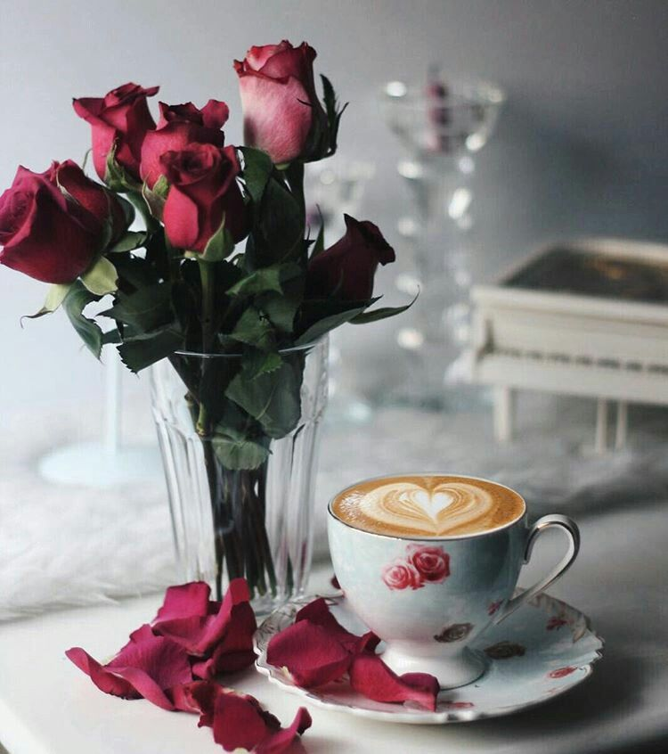 القهوة روووح الحياة Coffee Flower Good Morning Coffee Coffee Cafe