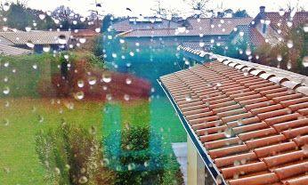 Pluie, rafales de vents .. c'est normal, c'est le mois de janvier !