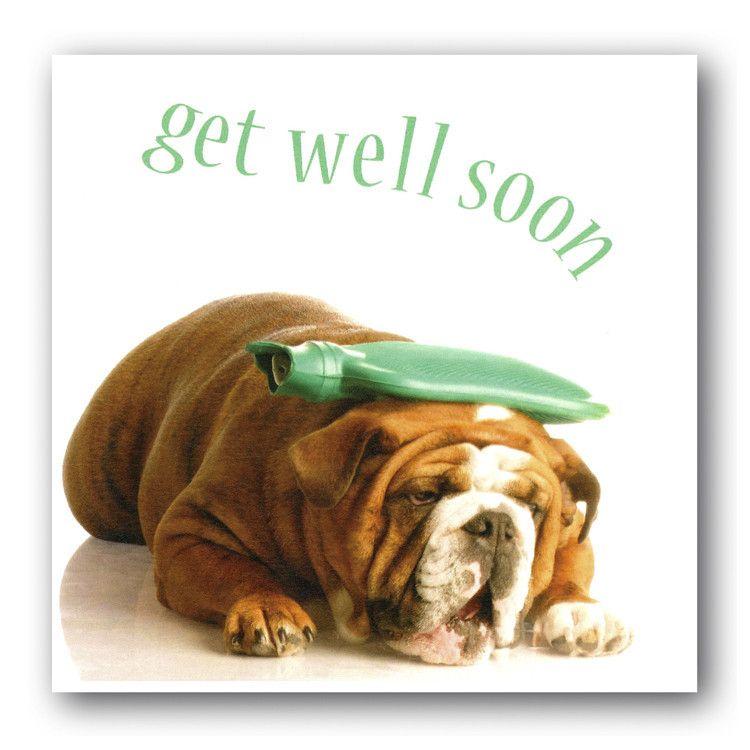 Get Well Soon Sick Dog E Card Bulldog Funny Get Well Get Well Soon