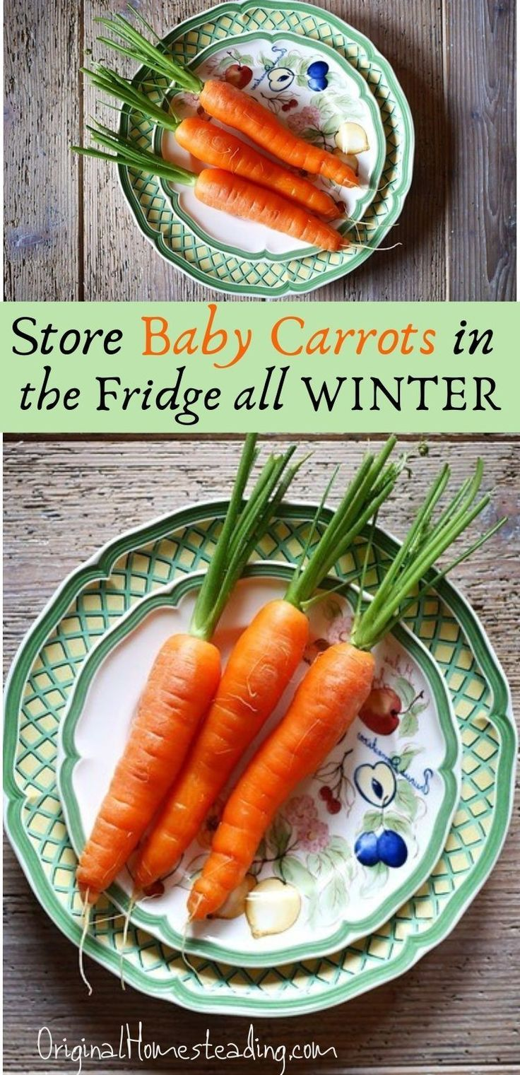 HOW to STORE CARROTS for WINTER In Your Refrigerator in
