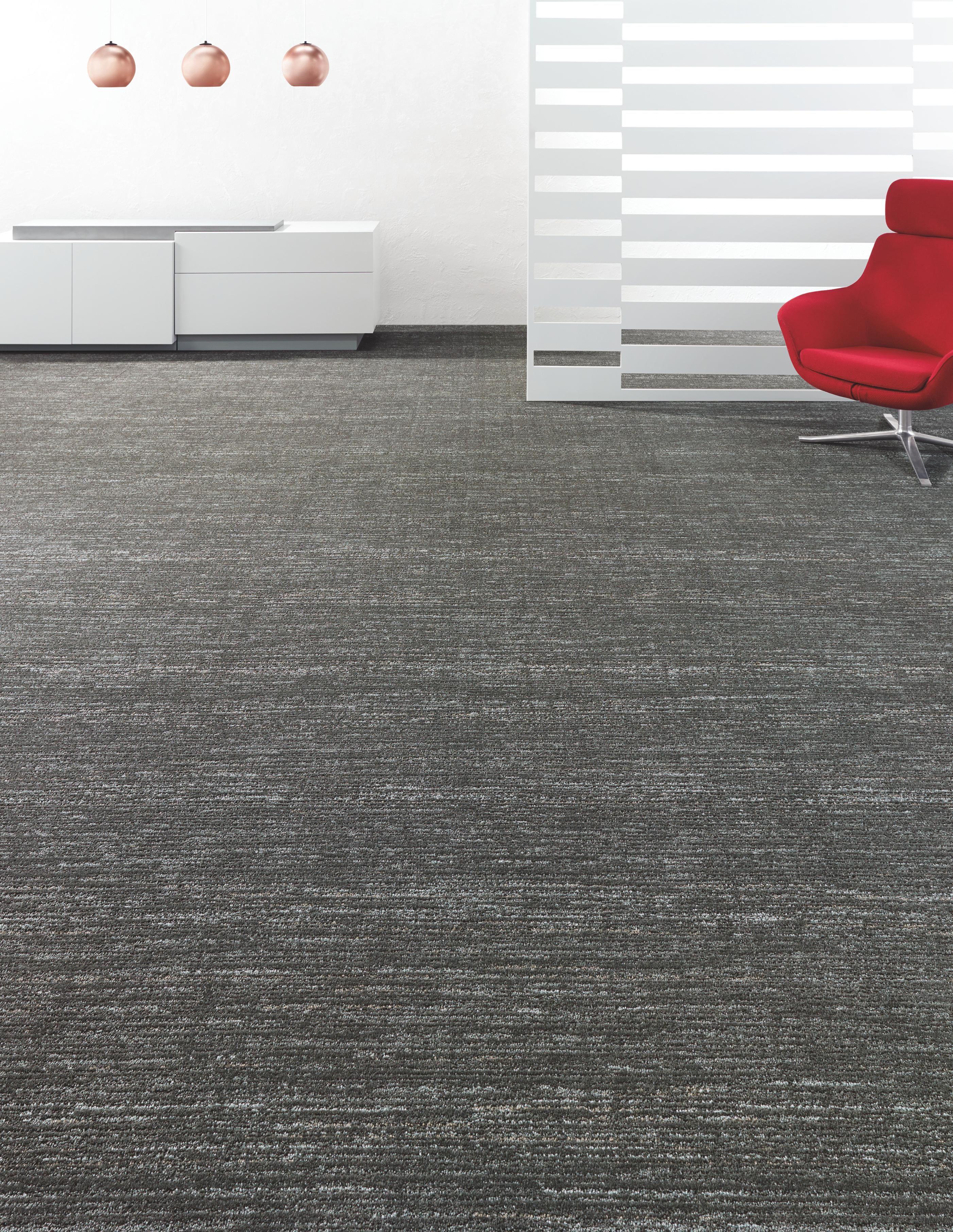 Chok Loom 5a211 Shaw Contract Shaw Hospitality Carpet Tiles For Basement Carpet Tiles Carpet Tiles Basement