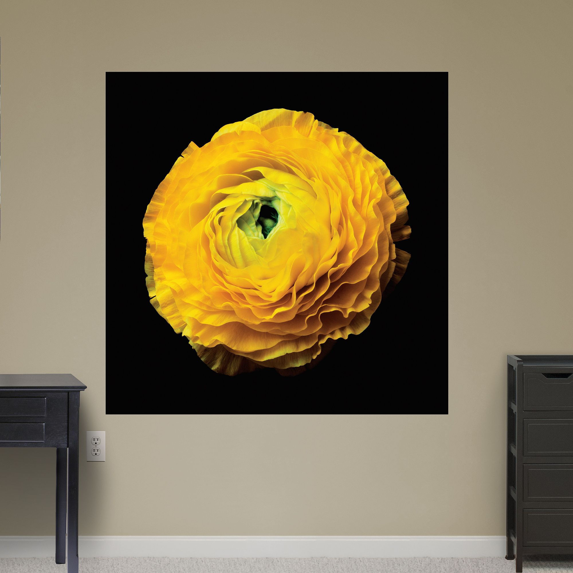 Ranunculus | Wall decals | Pinterest | Ranunculus and Wall decals
