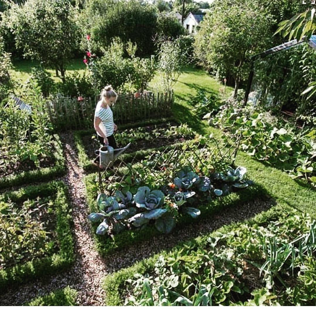 Pin En The Garden