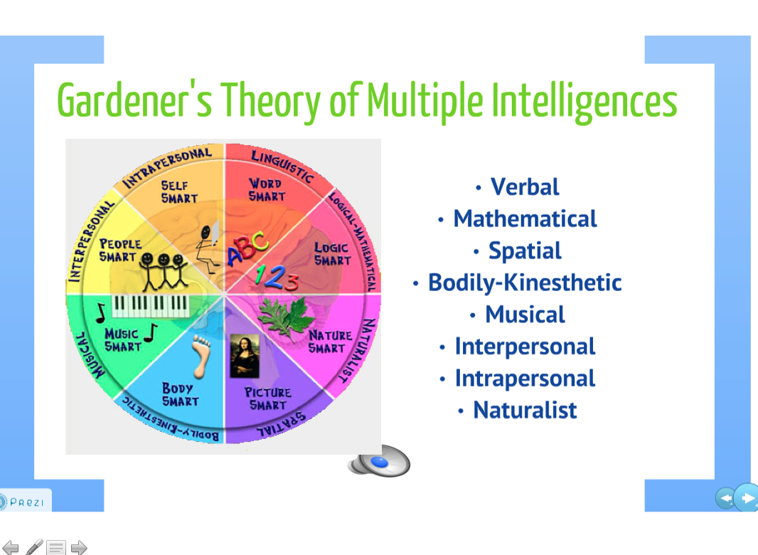 transformative learning theory and multiple intelligences In 1978, jack mezirow divulged the theory of adult transformative learning  the  learning process by infusing spiritual intelligence (sq) theory into a new model.