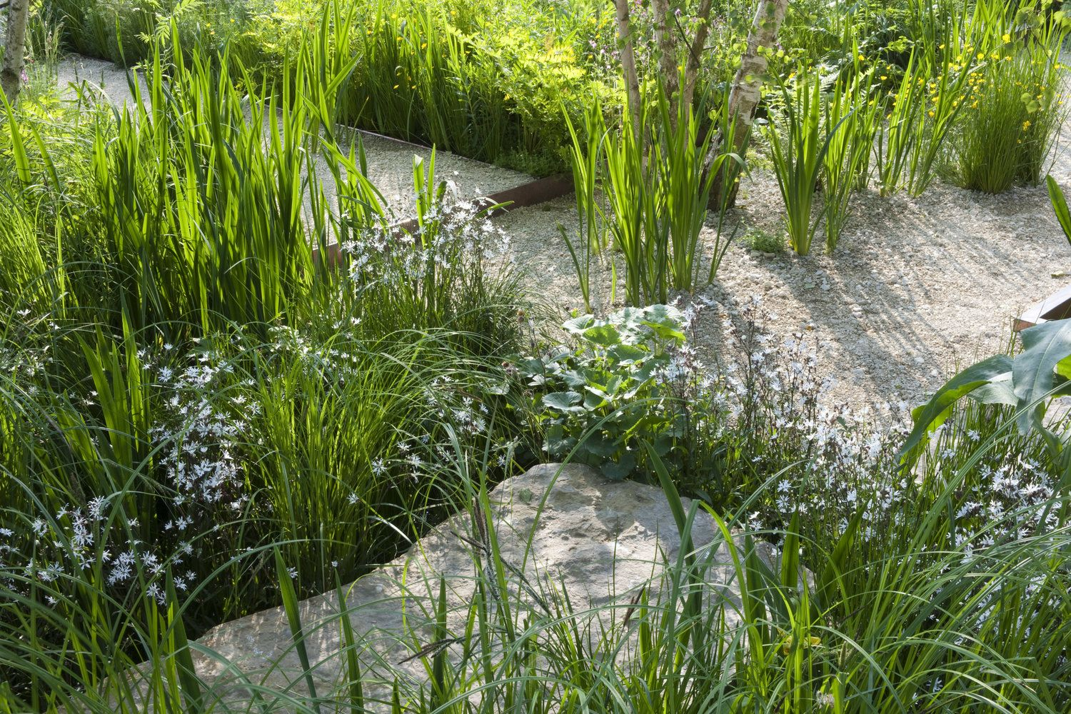 Photo of Show Gardens – RHS Chelsea 2012 — Sarah Price Landscapes