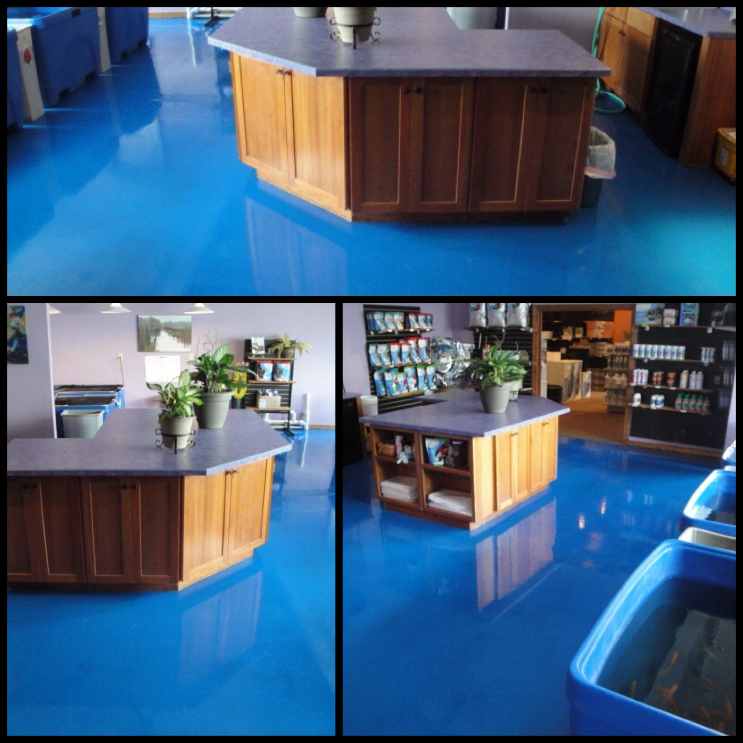 A Striking Reflective Blue Floor Gives The Illusion Of