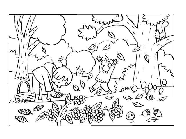 kleurplaten herfst bos