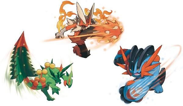 Mega Sceptile Swampert And Blaziken Pokemon