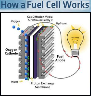 How Exactly Do Fuel Cells Work? | photos | Hydrogen