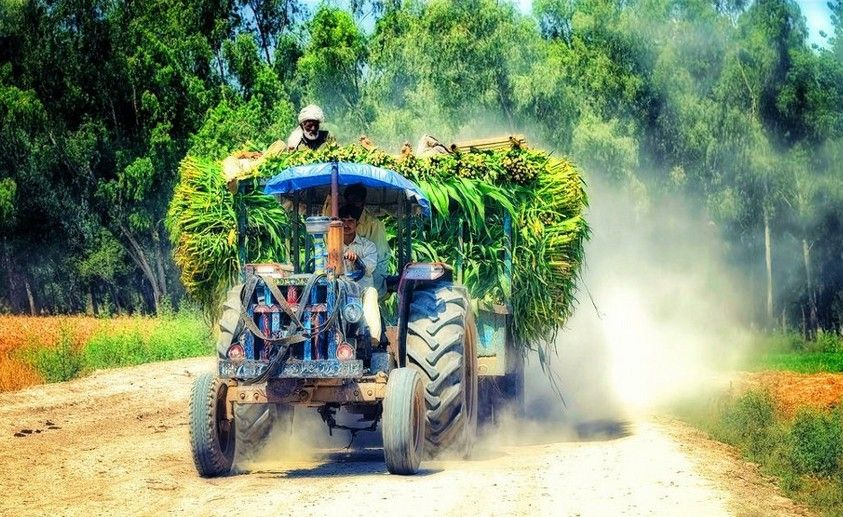 essay on rural life in pakistan Sr no  rural life urban life 1  environment: close / direct contact with nature preliminaries influenced by natural environmental elements like rain, heat.