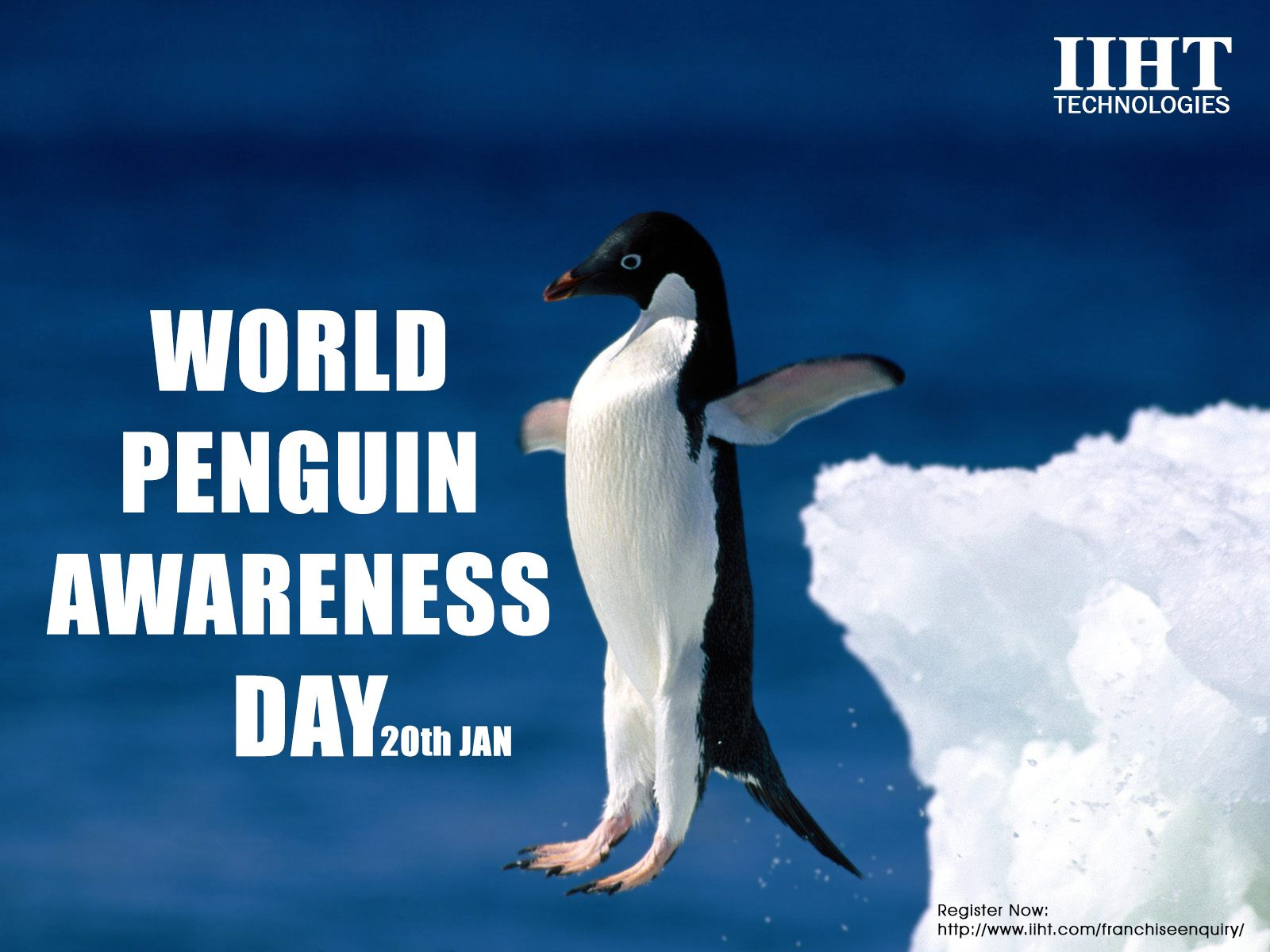 Penguin Awareness Day was created to celebrate everybody's