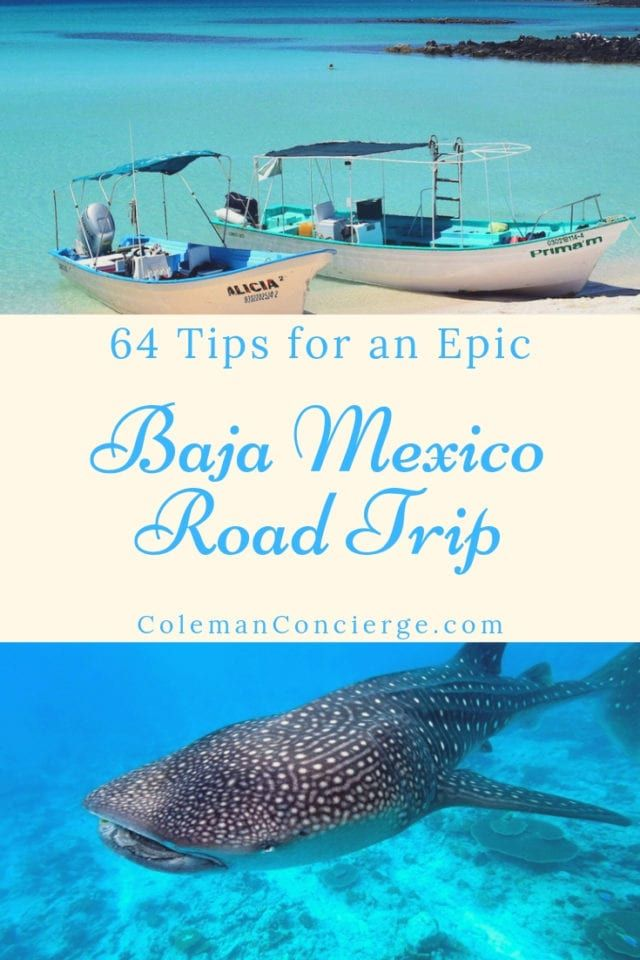 Driving the Baja Peninsula is the ultimate road trip. Baja California boasts some of Mexico's most beautiful beaches, unique desert environments, and amazing marine encounters (think petting grey whales and snorkeling with whale sharks!). A Baja road trip lets you explore at your own pace. Read on for our 64 tips to DIY your Baja road trip! #bajacalifornia #bajamexico #bajamexicoroadtrip #bajabeaches #Mexico #Roadtrip