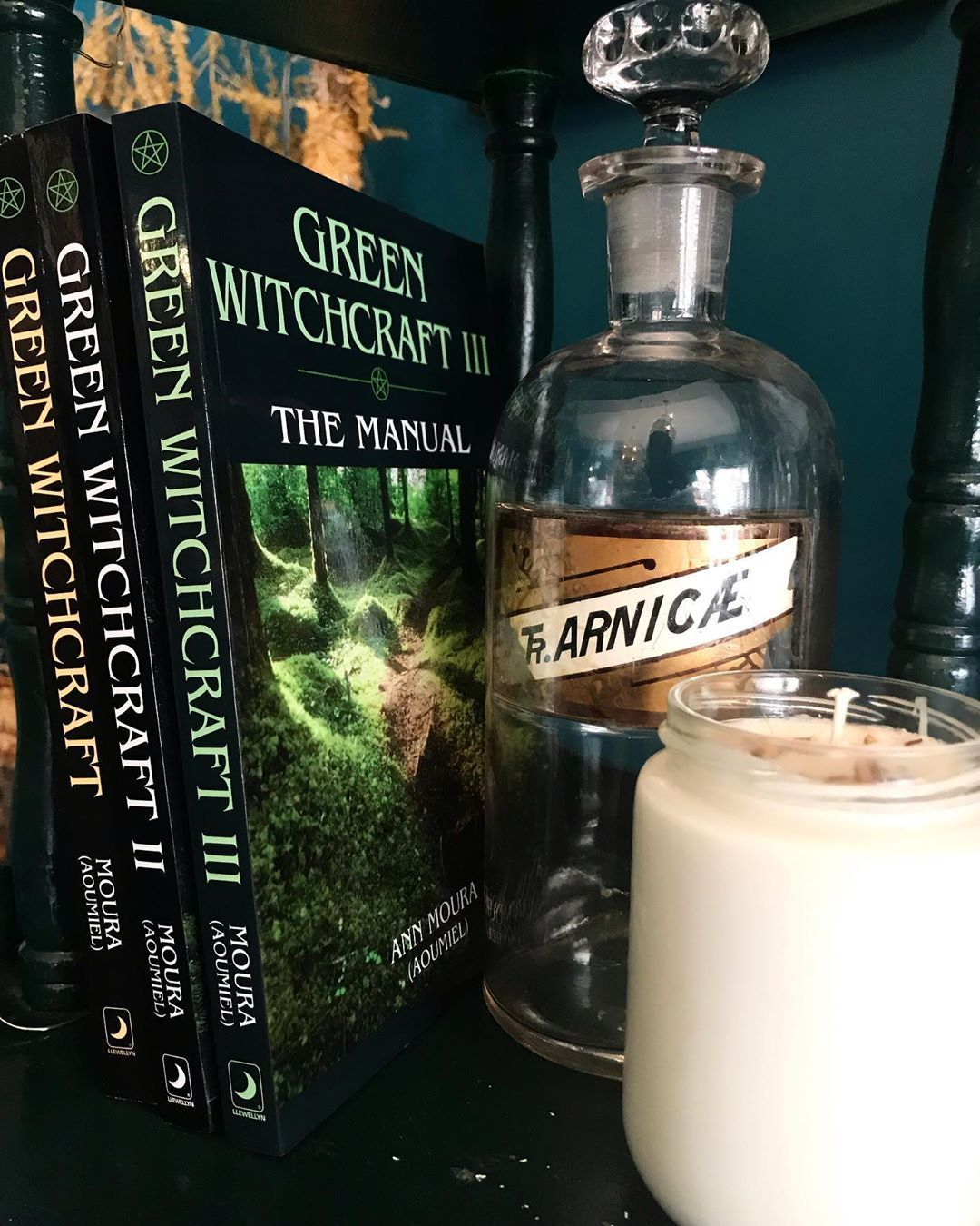 Positive and practical, the Green Witchcraft series brings together the best of both modern Wicca, herb craft and folk magic. Explore magical training for the independent thinker, rituals for self-initiation, rites of passage and attune to the cycles of nature and the universal powers. . . .  #apothecary #herbs #herbalmedicine #plantallies #gratitude #handmade #natural #magic #witchy #craft #tradition #roncesvalles #dundaswest #toronto #vegan #crueltyfree #wares #potions #herbalist #ethicallysou #greenwitchcraft