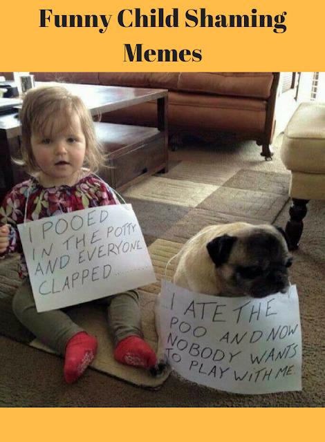 Funny Child Shaming Memes Dog Shaming Funny Cute Funny Animals Animal Shaming