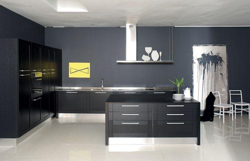 Liciaaran Cucine  Modern Kitchen Cabinets Quality Kitchens Best Contemporary Kitchen Cabinets Review