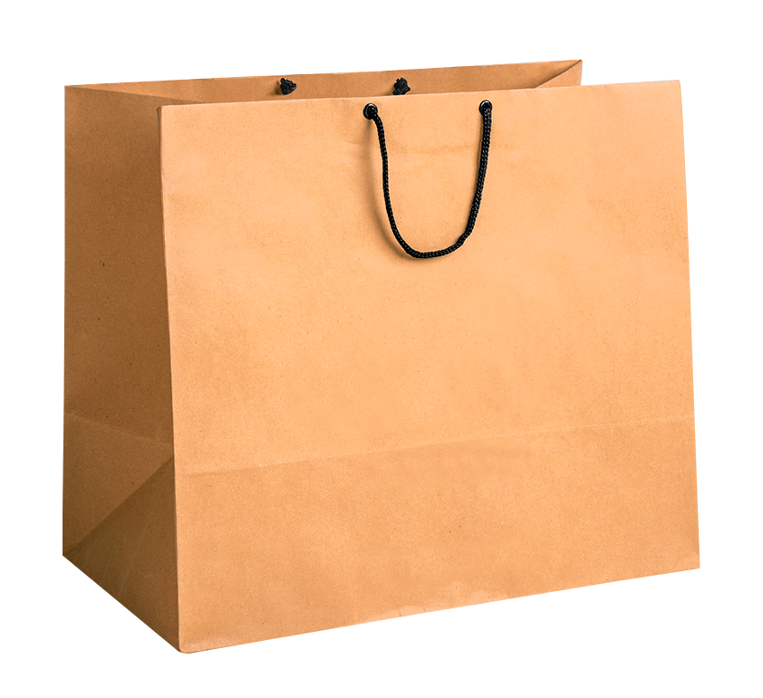 Shopping Bag Png Image Bags Online Bags Fashion Bags