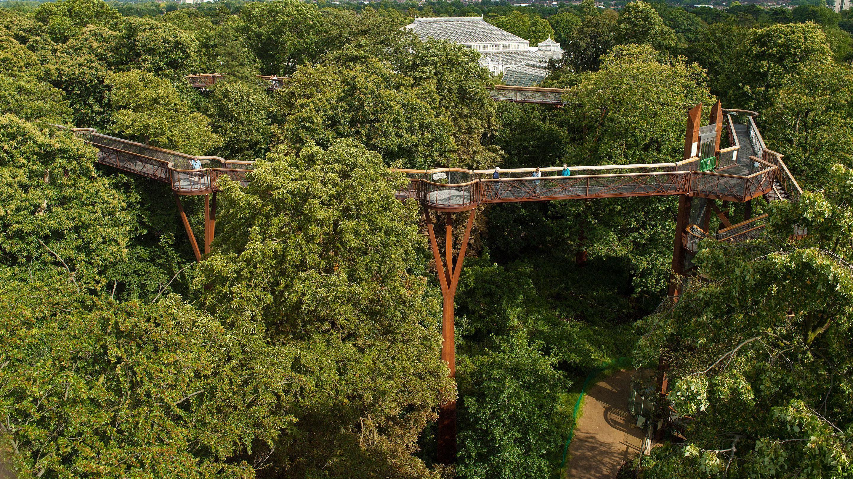 3e6a08e8c1e1fadb93282ca25a70a32b - How High Is The Tree Top Walk At Kew Gardens
