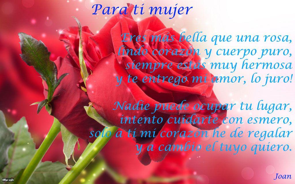Datablogmetadescription Rosas Rose Wallpaper Flowers Y Rose