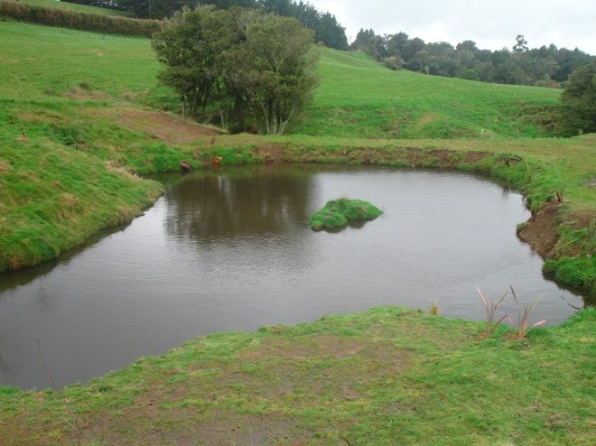 Your Own Catchment Pond Dam On Your Own Property Is One Way Of Making Sure You Have A Reserve Water Source It Aquaponics System Aquaponics Backyard Aquaponics
