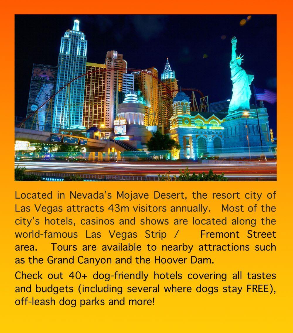 Off Leash Dog Parks Dog Runs Las Vegas Nevada Dog Friendly Hotels Dog Park Road Trip