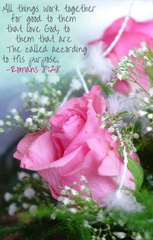 The Meaning Of Grace A Brief Review A Friend Loves At All Times