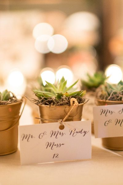 Stunning Miami Garden Wedding