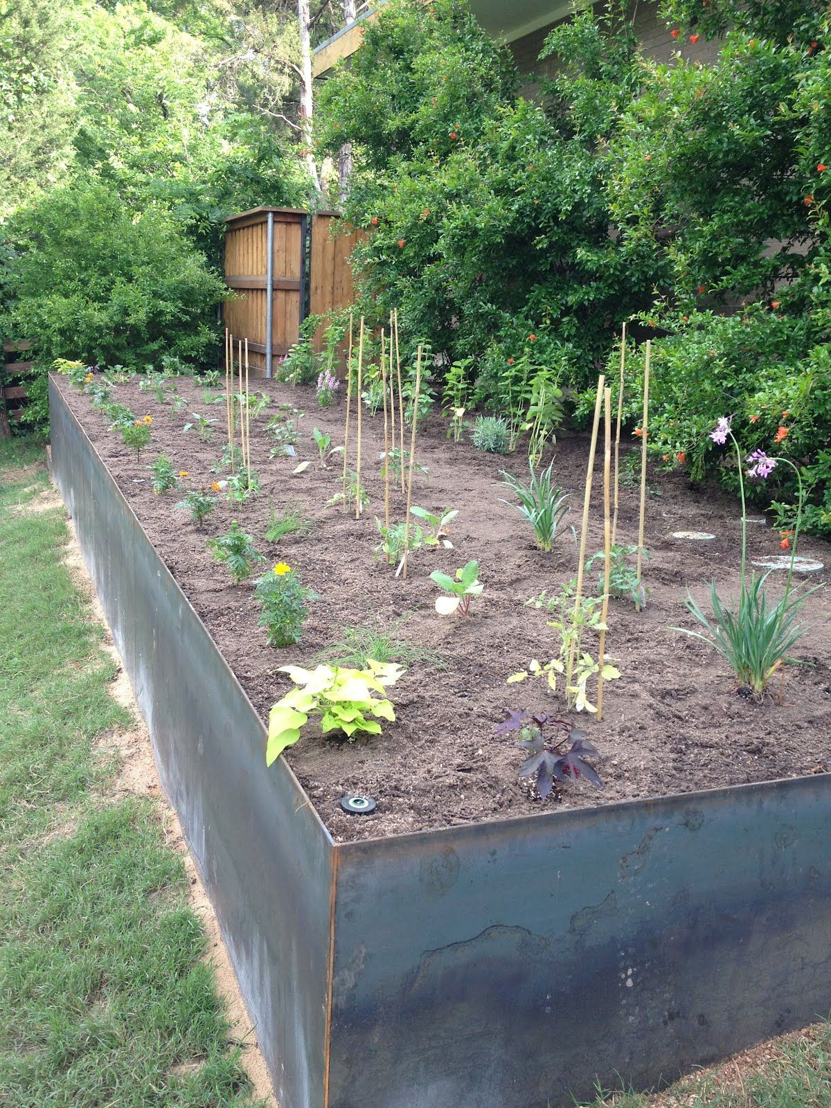 Steel vegetable garden retaining wall farm garden - How to build a garden retaining wall ...