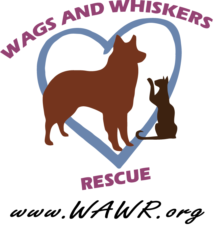 Wags And Whiskers Rescue Modesto Ca Wags And Whiskers Rescue Animal Rescue
