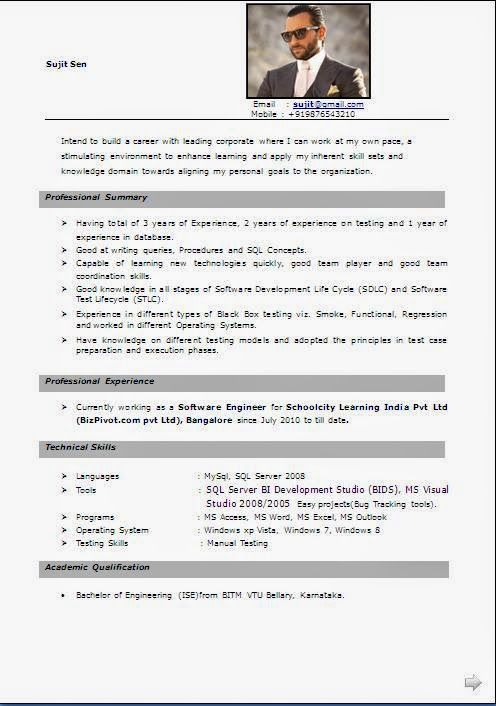 curriculum vitae samples word format Sample Template Example - manual testing sample resumes