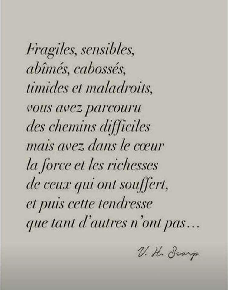 Vanessa On Twitter Proverbes Et Citations Phrase Bonheur Citation