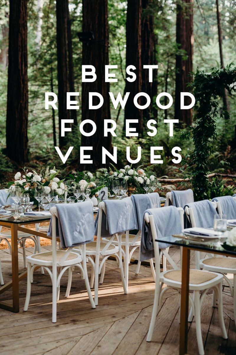 Best Redwood Forest Wedding Venues in California | Forest ...