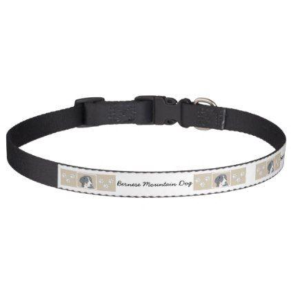 #Bernese Mountain Puppy Pet Collar - #bernese #mountain #dog #puppy #dog #dogs #pet #pets #cute #bernesemountaindog