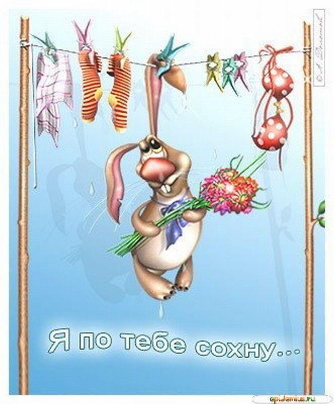 Смешные открытки про любовь, для любимого