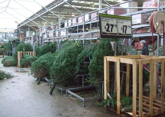 Home Depot Christmas Trees   Natural Whimsical Christmas ...