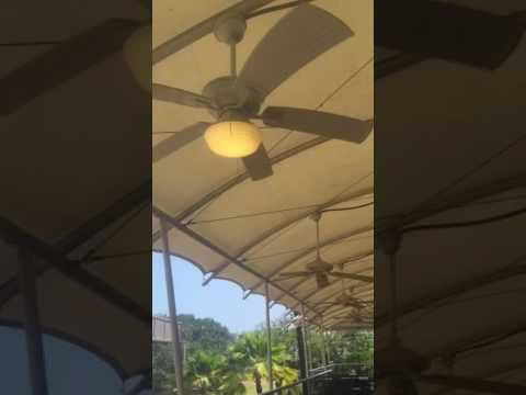 3 home decorators collection marshlands and 3 casblanca lanai ceiling fans running youtube