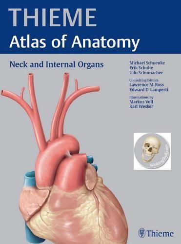 Thieme atlas of anatomy neck and internal organs pdf download e thieme atlas of anatomy neck and internal organs pdf download e book fandeluxe Choice Image